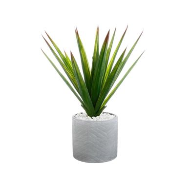 ALINE  Vert