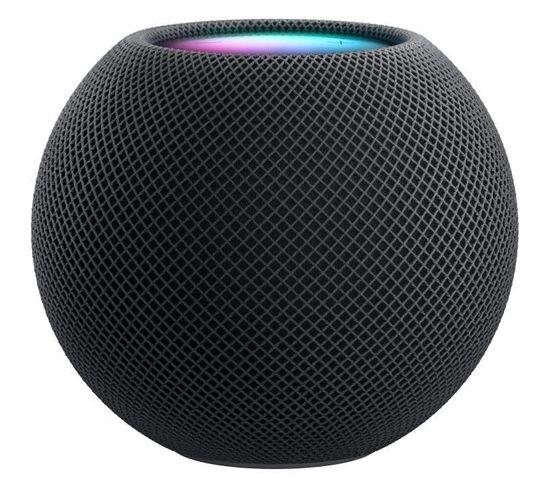 Enceinte Bluetooth Homepod Mini Gris Sidéral
