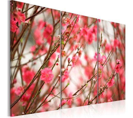 Tableau Branches Du Cerisier 120 X 80 Cm