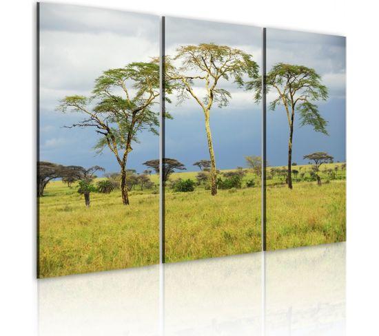 Tableau Arbres De L'afrique 120 X 80 Cm