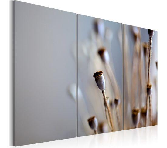 Tableau Fleurs Sauvages En Automne 60 X 40 Cm