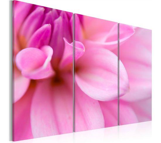 Tableau Dahlia Rose 120 X 80 Cm