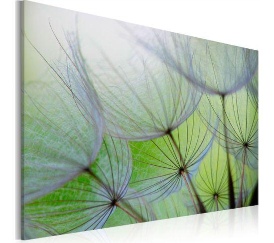 Tableau Dandelion In The Wind 60 X 40 Cm